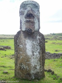 The traveller Easter Island
